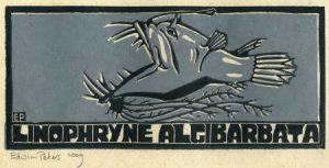 Linophryne Algibarbata | kleurenhoutsnede | 25 x 11 cm | 2009